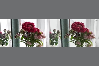a thumdnail for published video. Flowers on a side table